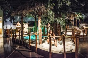 Get to know about the best Museum of the Naples Florida